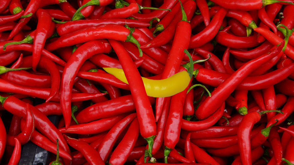 red chili peppers with yellow